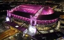 arena-roze-05.jpg